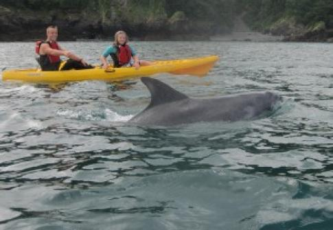 Kayak hire on the North Devon coast