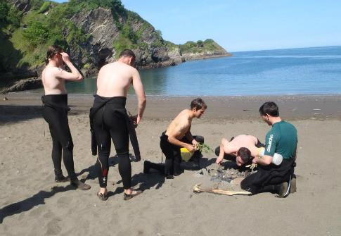Stag & Hen Beach Activities