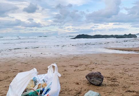 beach clean, sustainable 2021, #2minutebeachclean, north devon, plastic free north devon